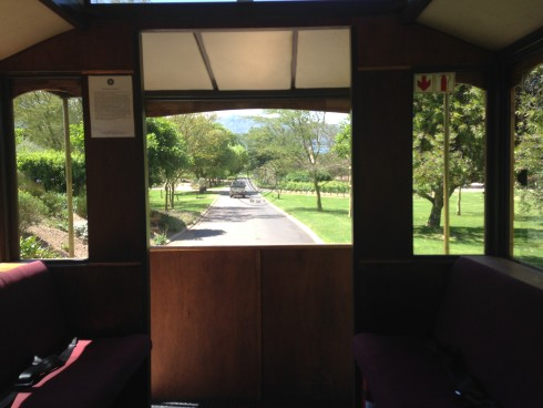 View from the tram, en route to the Manor House at Anthonij Rupert Wines.
