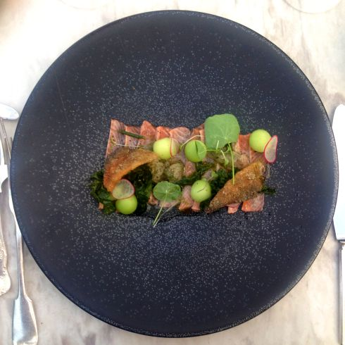 Trout ceviche, melon, sea lettuce - served with Thelema Verdelho 2015