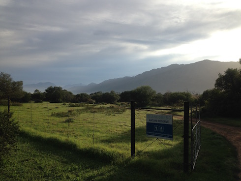 An early morning game drive. This is the entrance to the Elandsberg Nature Reserve.